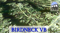 Birdneck Homes For Sale