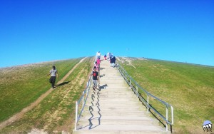 Mt Trashmore Stairs