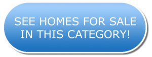 See Homes For Sale In This Category Button